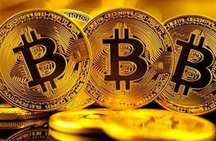Bitcoin Deve Ter 50% de Adoção em 9 Anos, Aponta Cálculo