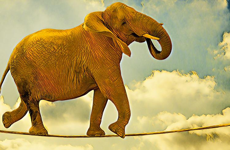 Elephant Marketing explica o potencial dos Eventos de Geração de Tokens (TGE)