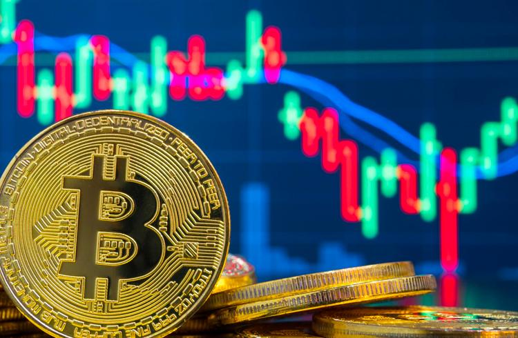 """Quinta onda de alta: Bitcoin e criptomoedas vão crescer """"além da nossa imaginação"""" no segundo semestre"""