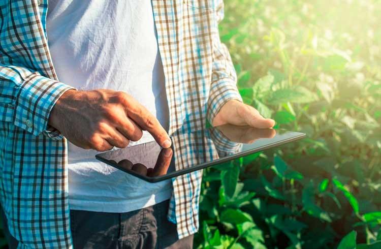 Produtores de óleo de palma da Malásia podem se beneficiar da mais recente tecnologia da Pavocoin