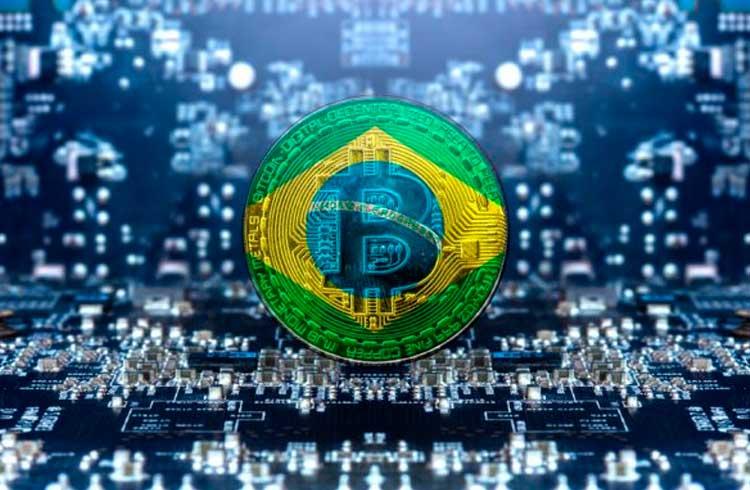 Pesquisa revela que o ecossistema de criptomoedas segue em expansão no Brasil e no mundo