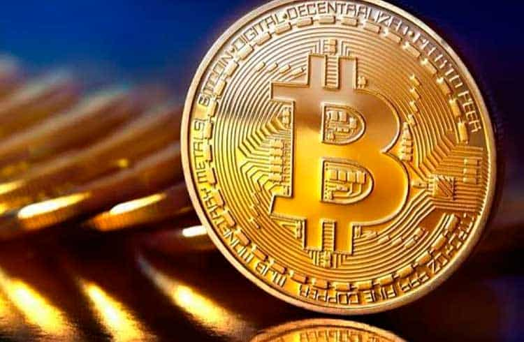Conceito antifrágil pode servir de guia para investidores de Bitcoin
