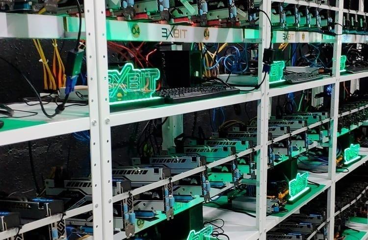 3xBit deixa entusiastas dos criptoativos visitarem sua fazenda de mineração no interior de São Paulo