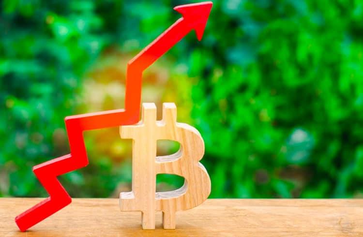 Bitcoin chega a ultrapassar US$8.800 e mercado de criptoativos atinge nova alta de 2019