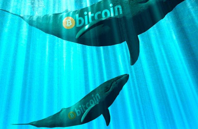 Bitcoins roubados da Bitfinex são movidos pela primeira vez desde 2016