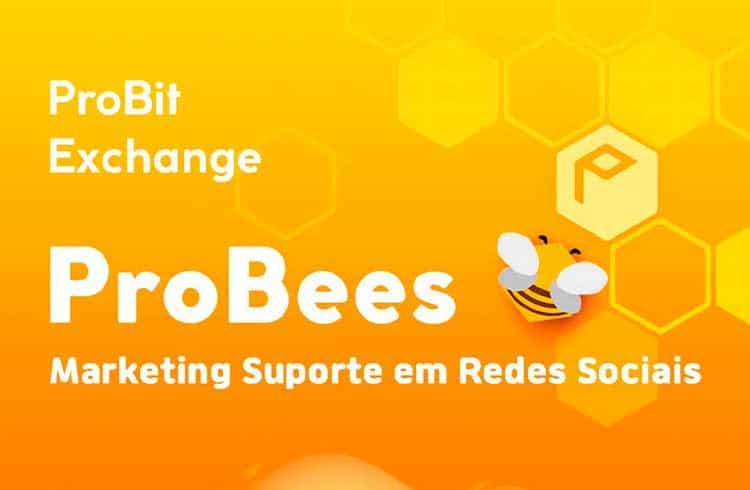 Probit Exchange está pagando até $800 no programa de Marketing Probees Brasil