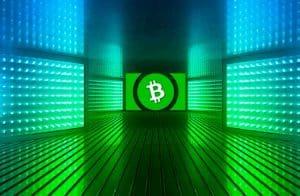 Após novo hard fork, mais de 20% da oferta de Bitcoin Cash é perdida em blocos errados