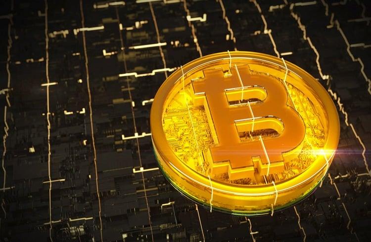 O Bitcoin realmente vai subir depois do halving?