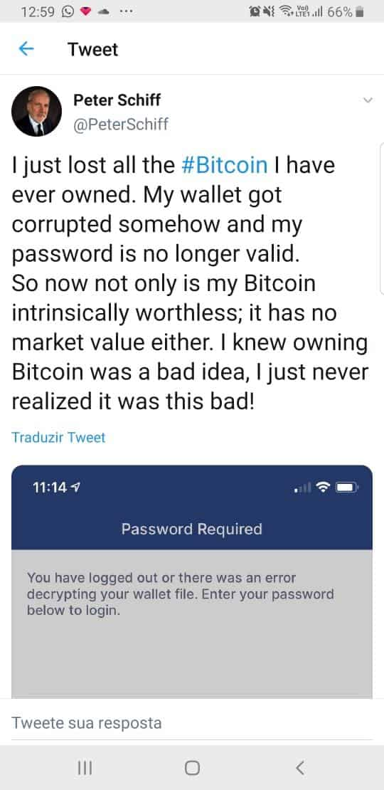 Peter Schiff afirmou, em sua conta no Twitter, que perdeu o acesso à sua carteira Bitcoin