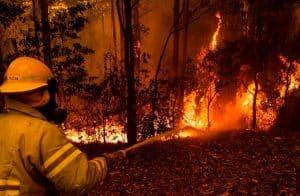 Binance doa US$1 milhão em BNB para combater queimadas na Austrália