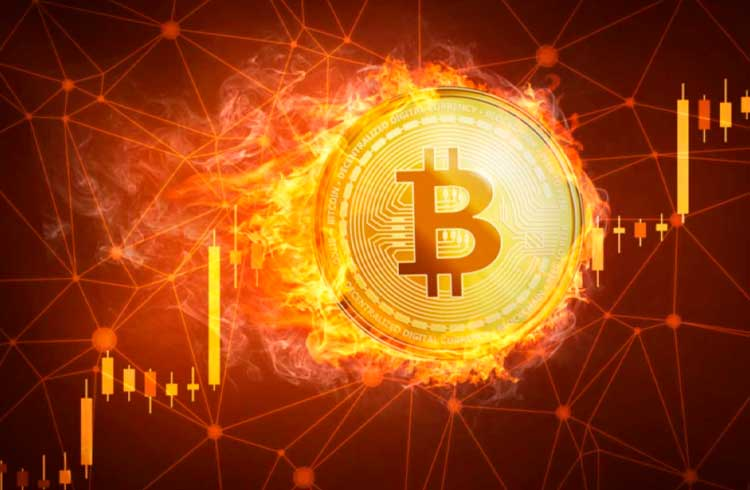 """Bitcoin caminha rumo à etapa de """"frenesi"""", afirma especialista em criptomoedas"""