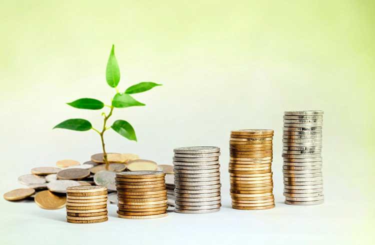 Uzzo recebe investimento de empresa do mercado tradicional