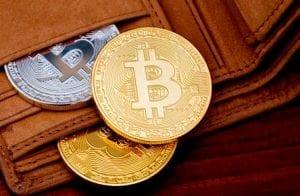 Qual carteira de Bitcoin você deve usar?