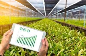 Blockchain será usada para rastrear suprimentos agrícolas da América do Sul