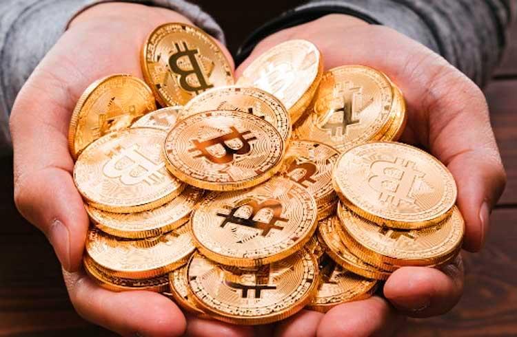 Doações em Bitcoin mantêm no ar importante biblioteca online