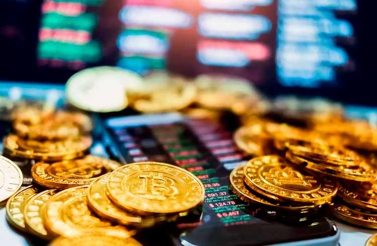 Hashdex lista fundo de criptoativos na XP Investimentos e reduz valor mínimo