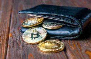Carteiras de criptomoedas: confira as melhores opções para usar com segurança