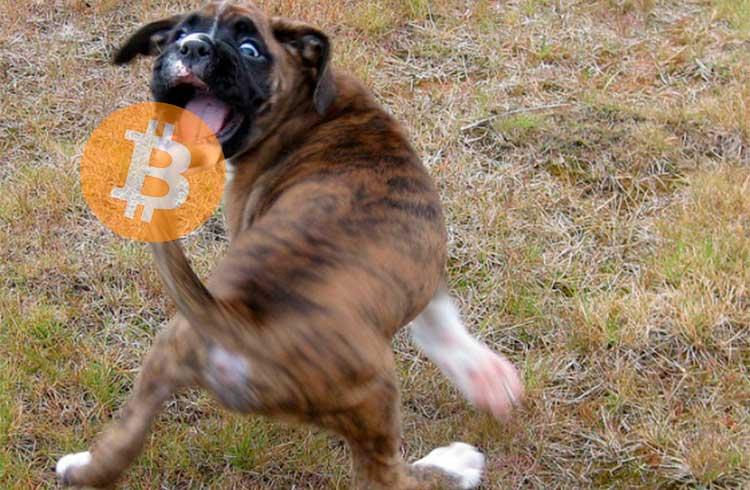 Goldman Sachs vai ter que acompanhar o Bitcoin, afirma bilionário