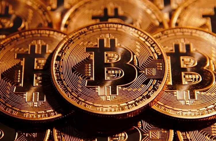 Previsão: 3 a cada 10 pessoas terão Bitcoin até 2024