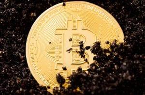 Escassez global de chips atinge mineração de Bitcoin na China