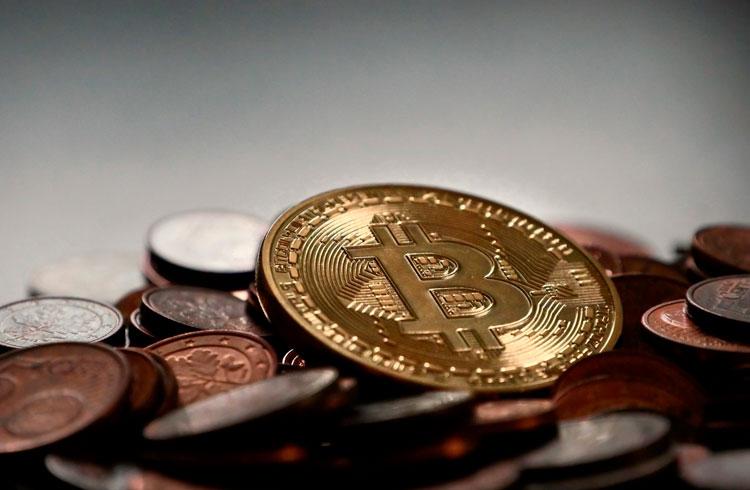 Não venda seu Bitcoin ou as baleias vão acabar com você, alerta analista