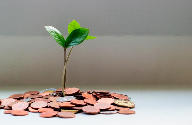 Quer receber muitos dividendos em 2021? Veja 2 carteiras