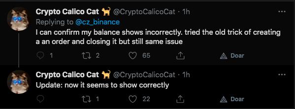 Usuário relata problemas com saldo na Binance, mas se retrata depois. Fonte: Crypto Calico Cat/Twitter.