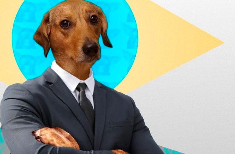 Dogecoin brasileira: Vira-Lata Finance lança token REAU