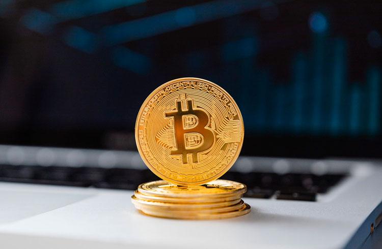 Time de beisebol dos Estados Unidos anuncia reserva em Bitcoin